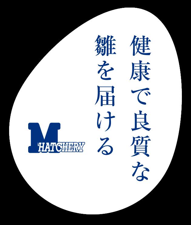 株式会社三重ヒヨコ